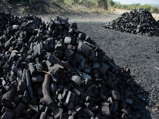 Local Charcoal producer