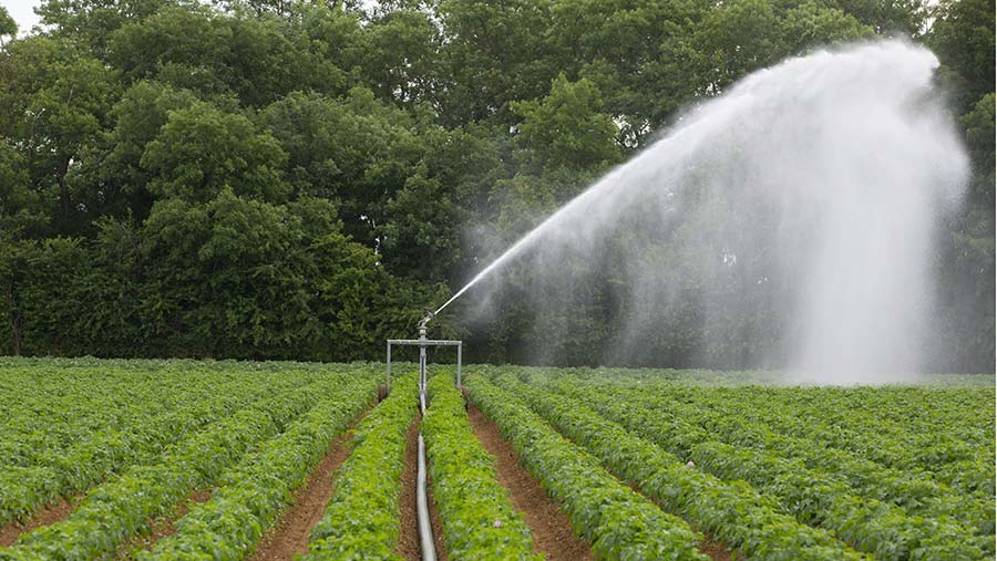 Fresh water is essential for food security